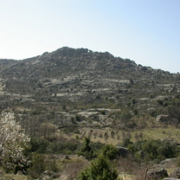 Castro Cerro de la Cabeza